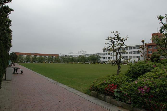 日本経済大学・保育短大・福祉大学_a0042310_2071227.jpg