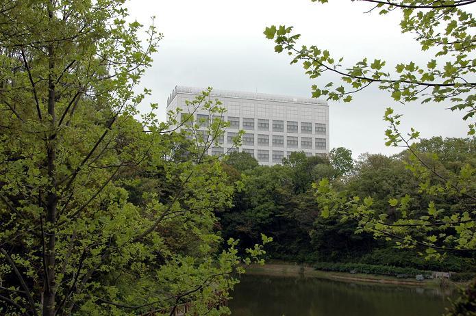 日本経済大学・保育短大・福祉大学_a0042310_2085224.jpg
