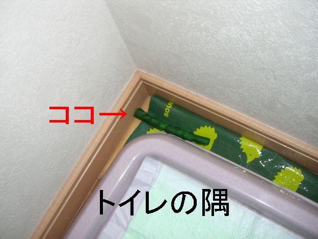 f0053952_15512287.jpg