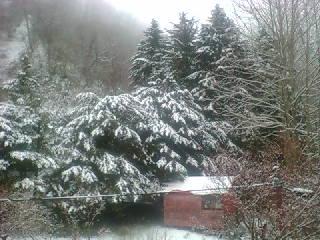 いまだ、雪降る。_b0063468_13422462.jpg