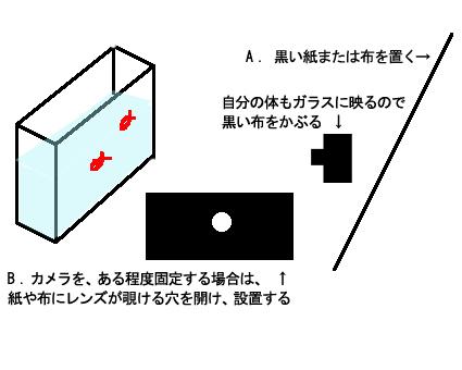 f0100215_10431146.jpg