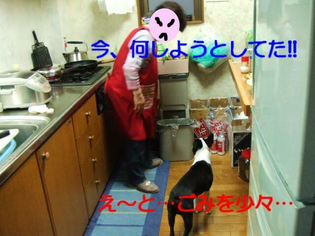 f0059334_8501752.jpg