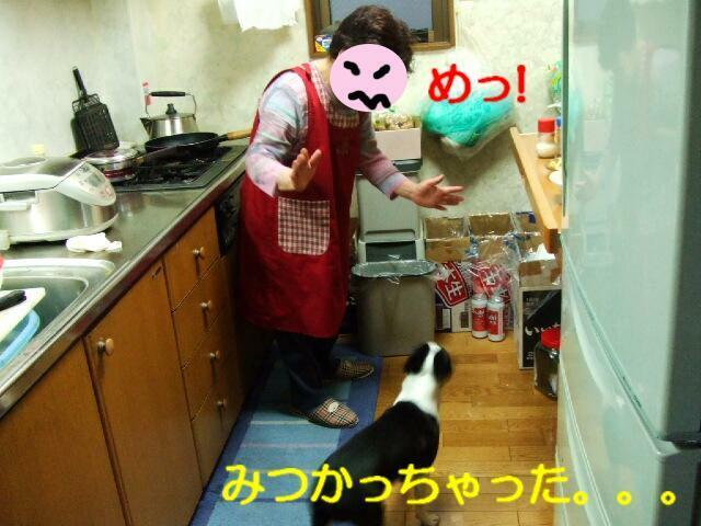 f0059334_8503845.jpg
