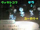 f0102448_2004797.jpg