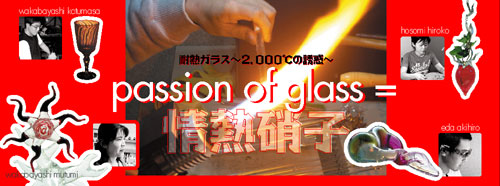 情 熱 硝 子 〜2000℃の誘惑〜_a0017350_09553.jpg