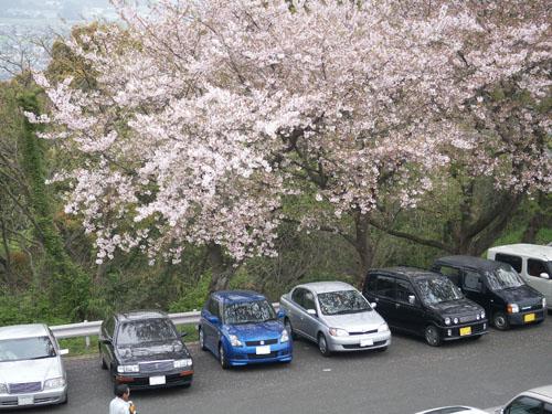 4月9日のお花見_b0083267_22112185.jpg