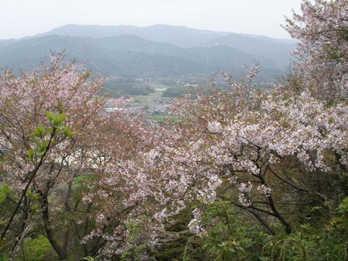 4月9日のお花見_b0083267_22125245.jpg