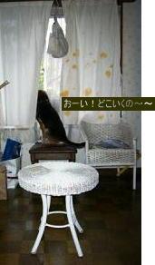 b0084186_14212899.jpg