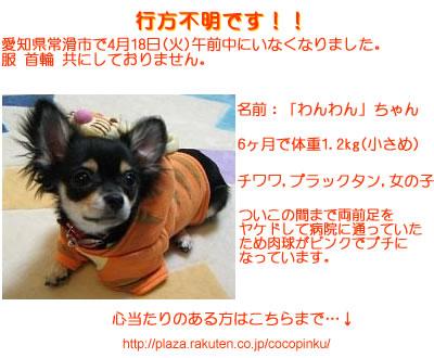 b0046103_2127477.jpg