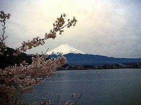チャレンジ富士五湖100Km(前日)_a0036808_8531240.jpg