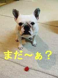 f0090117_2012836.jpg