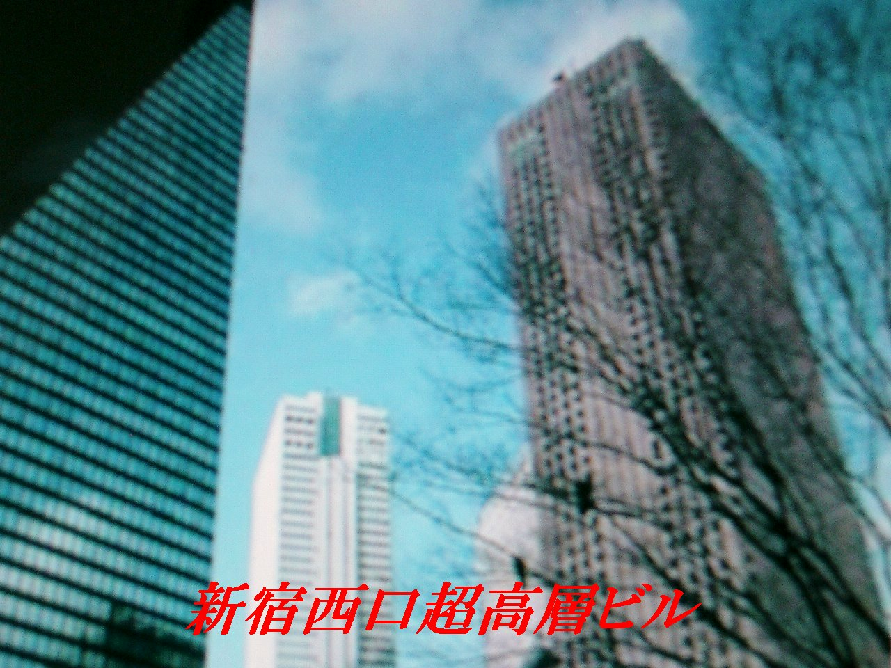 e0012724_1693135.jpg
