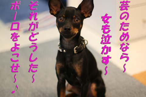 b0076126_1450274.jpg