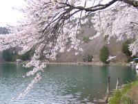 四尾連湖と蛾ヶ岳ハイキング_f0019247_2256473.jpg