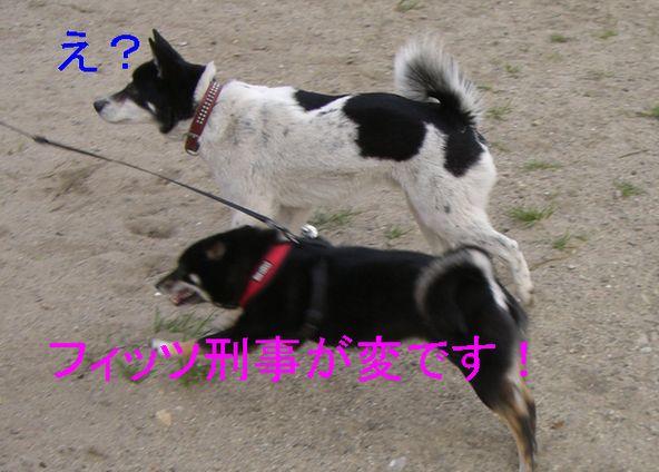 f0053952_20361894.jpg