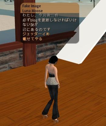 c0074259_951128.jpg