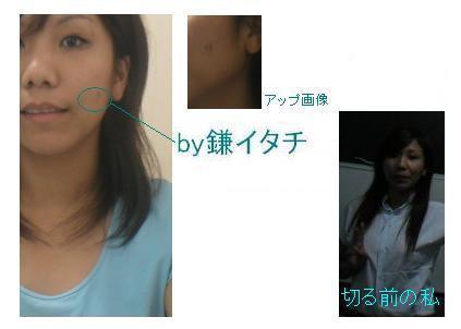 f0012113_8461622.jpg