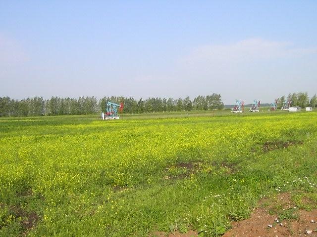 ユーラシア大陸横断 シベリア横断 (36)  ウファからカザンへ_c0011649_129582.jpg