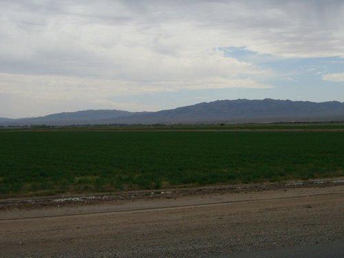 Day 10 (中編)オートマンからモハビー砂漠へ_f0088456_0335682.jpg