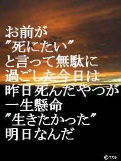 b0072501_8442760.jpg