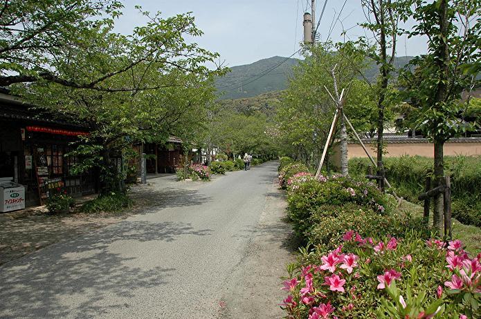 城下町 秋月_a0042310_17242677.jpg