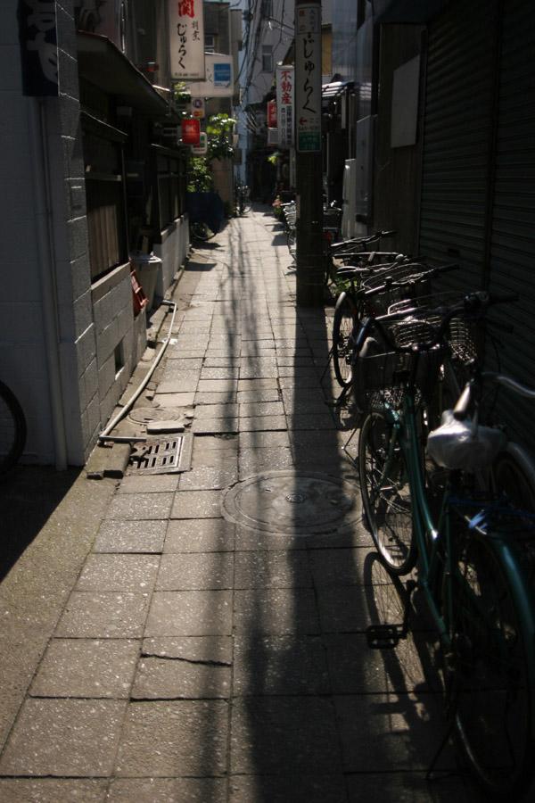 Shadowish Shiny Scene_e0022810_2322596.jpg