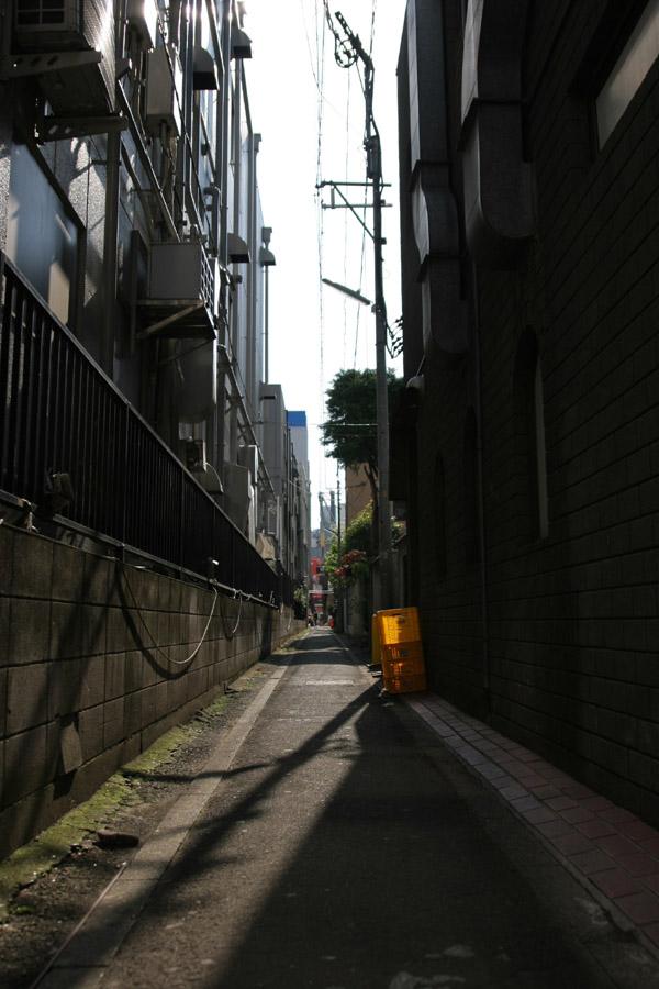 Shadowish Shiny Scene_e0022810_237561.jpg