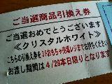 b0053414_1340915.jpg