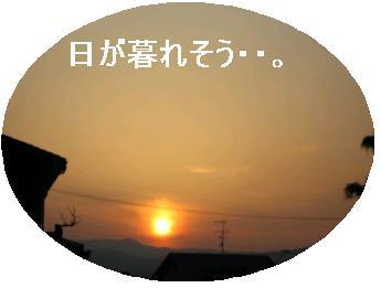 e0085147_2491297.jpg