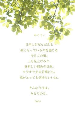 d0059252_2025751.jpg