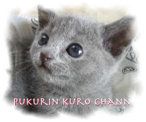 Songs for Kotaro_d0057858_18203190.jpg