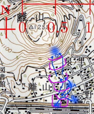 06.4/18 旧軽住民によるサル群追い上げの成功例   報告 T.M. _e0005362_2136548.jpg