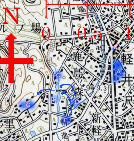 06.4/18 旧軽住民によるサル群追い上げの成功例   報告 T.M. _e0005362_2141610.jpg