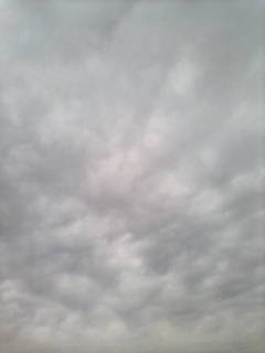 晴れそうな…曇り空_e0051174_7421928.jpg