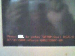 b0028176_1654596.jpg