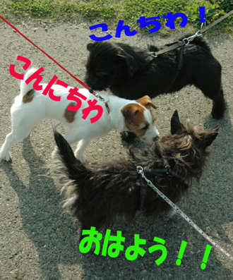 f0035044_2127814.jpg
