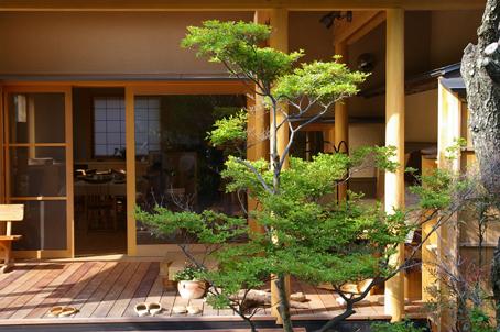 兼松邸で北鎌倉湧水ネットワーク2006年度総会(4・30)_c0014967_19271099.jpg