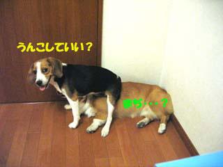 f0077097_11532620.jpg