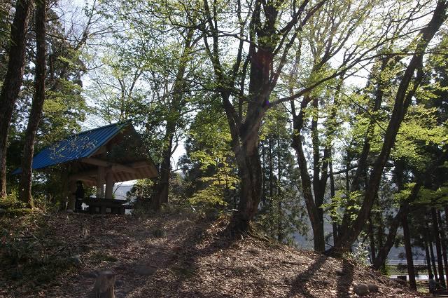 石川県 綿ヶ滝いこいの森キャンプ場 の写真g21779