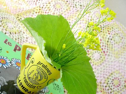 多摩川 菜の花_d0003401_23361470.jpg