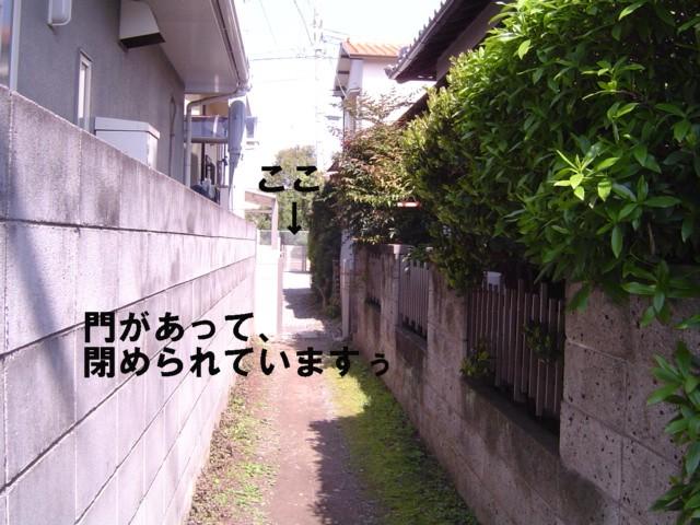 f0012924_459114.jpg