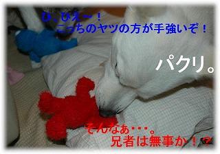 a0047325_1758855.jpg