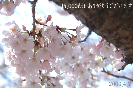 f0080530_10102580.jpg