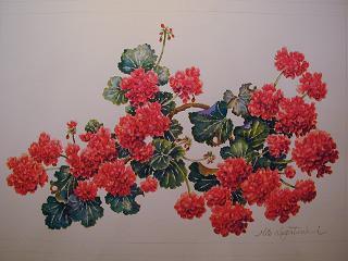 花咲き誇る_b0089338_20574053.jpg