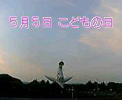 f0048017_18561972.jpg