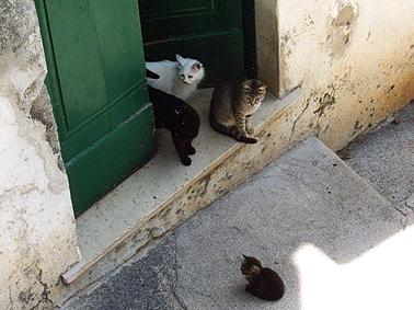小さな村ラウ゛ェッロ〜イタリア_b0089084_19244326.jpg