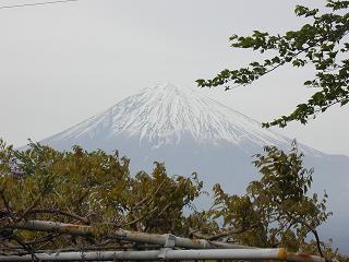今日の富士山_b0089338_20581044.jpg