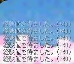 d0057363_281347.jpg
