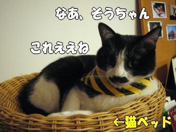 b0041182_0243221.jpg