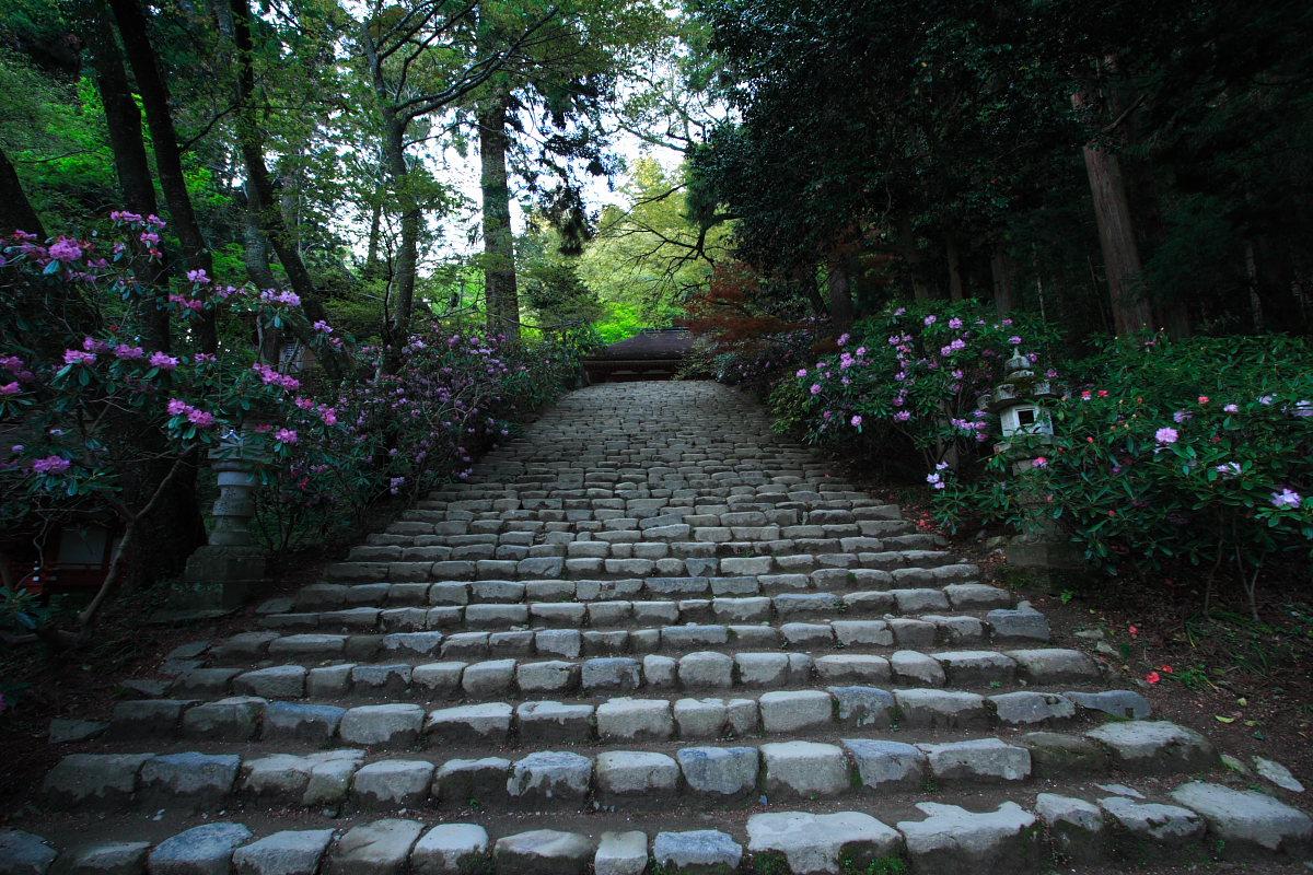 奈良 女人高野 室生寺 2_f0021869_23332013.jpg